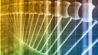 NCI wins EU Big Data funding award for pharmaceutical analytics research